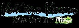 Venture Vienna